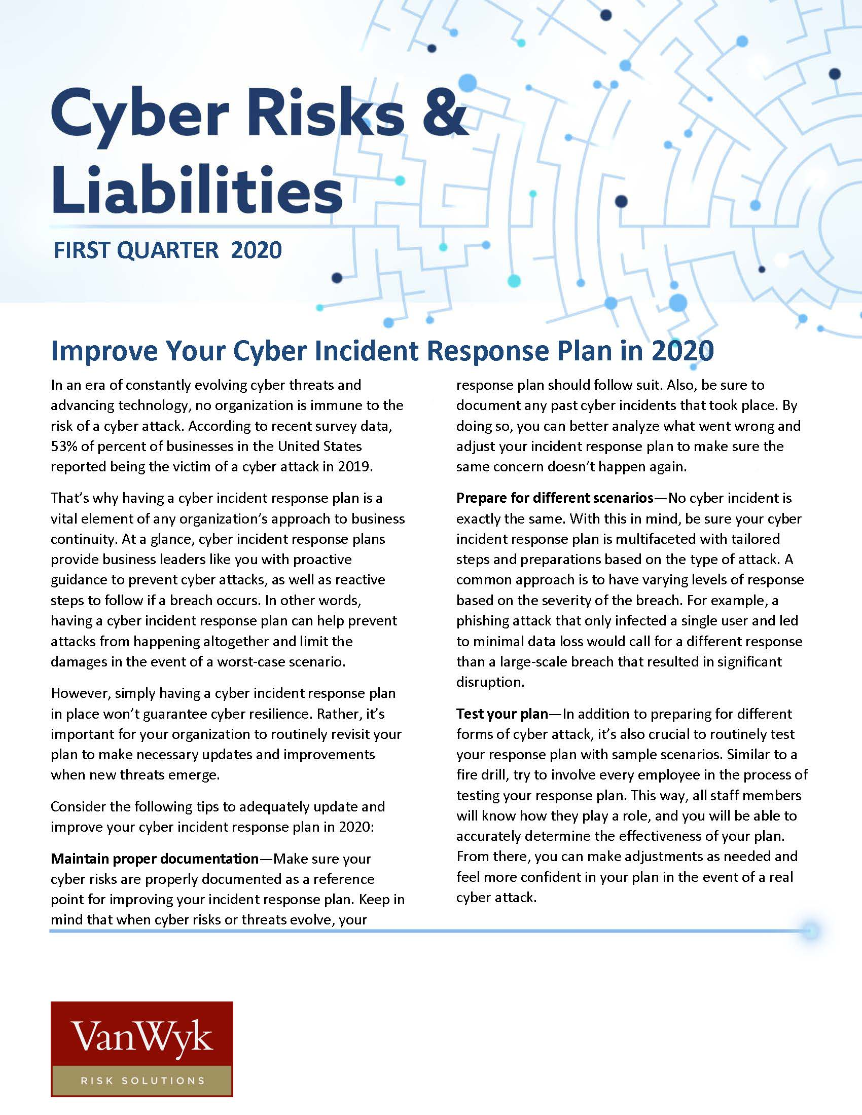 Cyber Risks and Liabilities